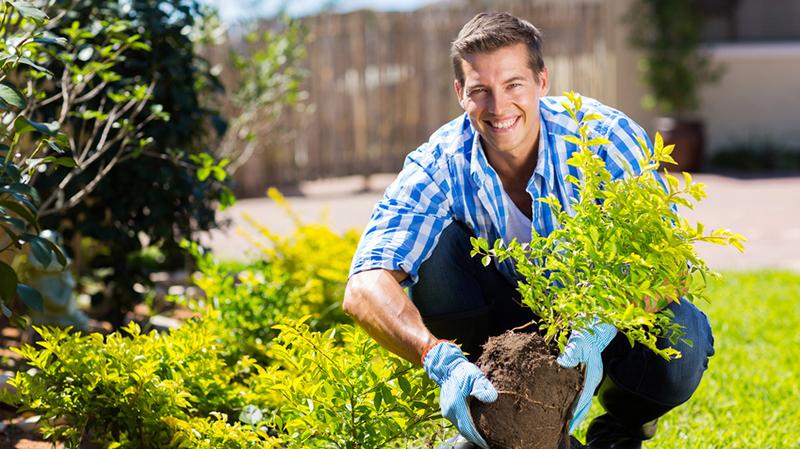 La gestion de portefeuilles est un peu comme le jardinage!